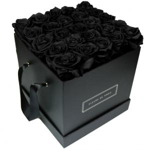 Collection Infinity Black Beauty Grand noir - anguleux