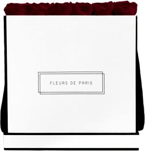 Collection Infinity Burgundy Luxe blanc - anguleux