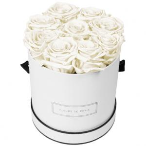 Collection Infinity Ivory Moyen blanc - rond