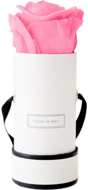 Collection Infinity Baby Pink Mini blanc - rond