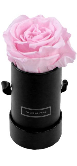 Collection Infinity Bridal Pink Mini noir - rond