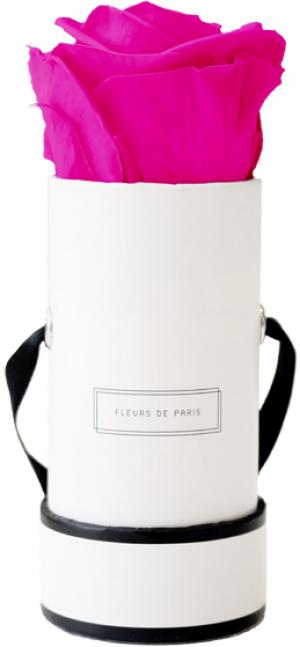 Collection Infinity Hot Pink Mini blanc - rond