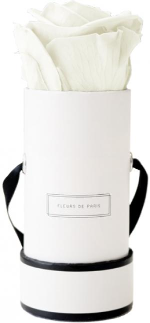 Collection Infinity Ivory Mini blanc - rond