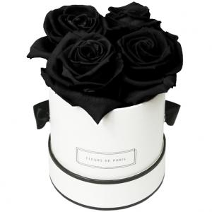 Collection Infinity Black Beauty Petit blanc - rond